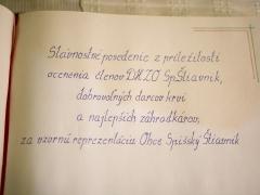 _MG_8118 copy